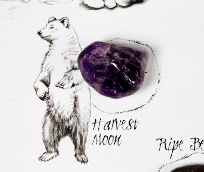 Harvest Moon Crystal on Medicine Wheel
