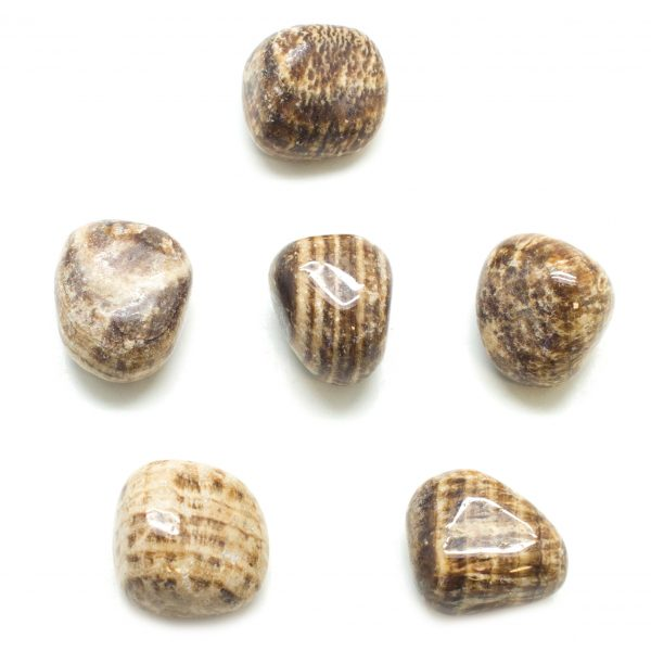 Aragonite Tumbled-Large-0