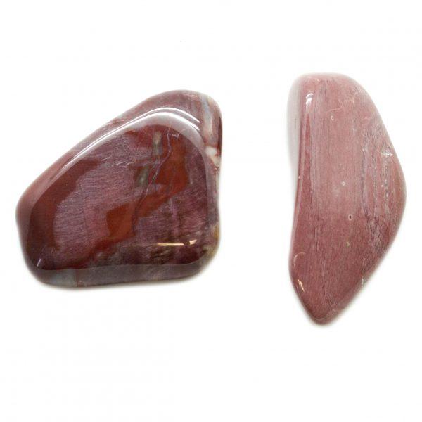 Petrified Wood Aura Stone Pair (Small)-67495