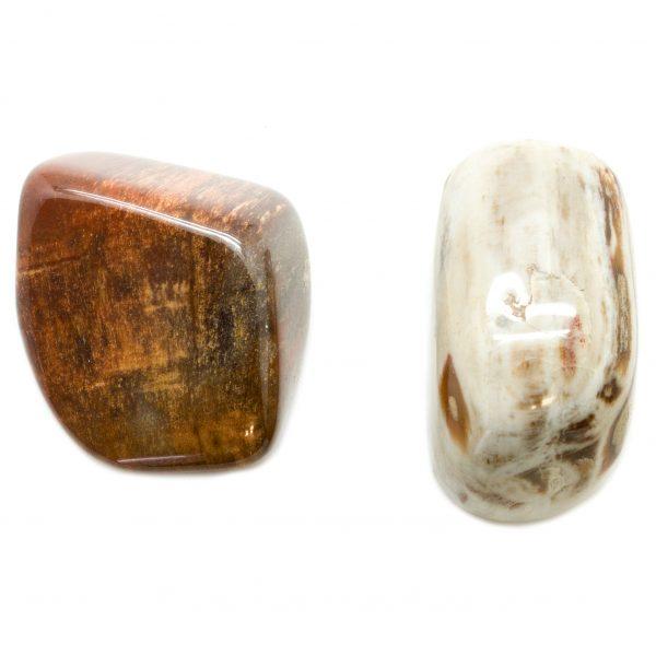 Petrified Wood Aura Stone Pair (Small)-0
