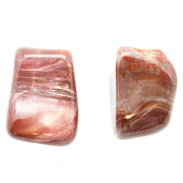 Petrified Wood Aura Stone Pair (Small)-67496