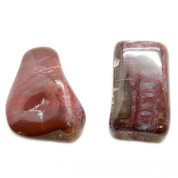 Pair Petrified Wood Aura Stones(Medium)-67498
