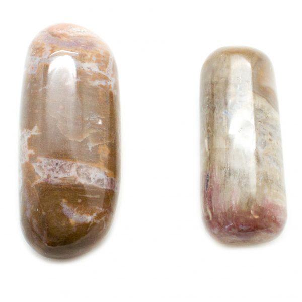 Pair Petrified Wood Aura Stones(Medium)-0