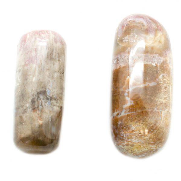 Pair Petrified Wood Aura Stones(Medium)-67499