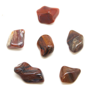 Petrified Wood Tumbled Stones (Sm.)-0