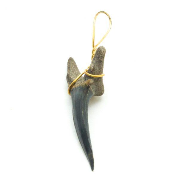 Shark Tooth Pendant(Small)-70361