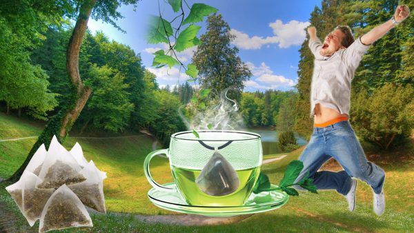 Labradorite Crystal Tea - Set of 12 Teabags-78885