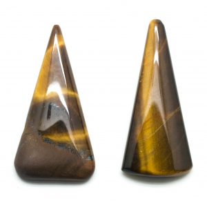 Tiger's Eye Freeform Cabochon Pair-0