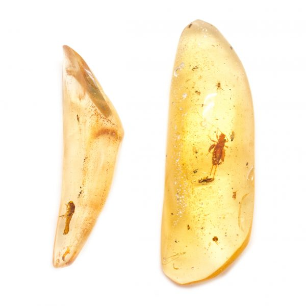 """Colombian Amber"" Aura Stone Pair (Medium)-113860"