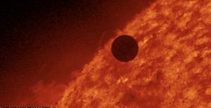 Venus Sun Transit Love Elixir-147732