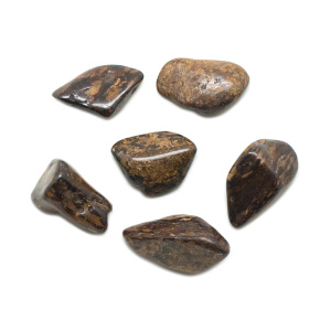 Bronzite Tumbled Stone Set (Large)-0