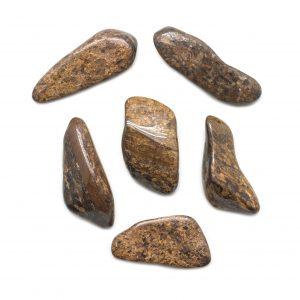 Bronzite Tumbled Stone Set (Extra Large)-0