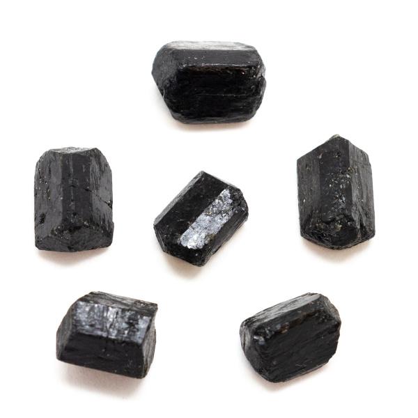 Partially Polished Black Tourmaline Crystal Set (Small)-163069