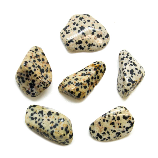 Dalmatian Tumbled Stone Set (Extra Large)-148853