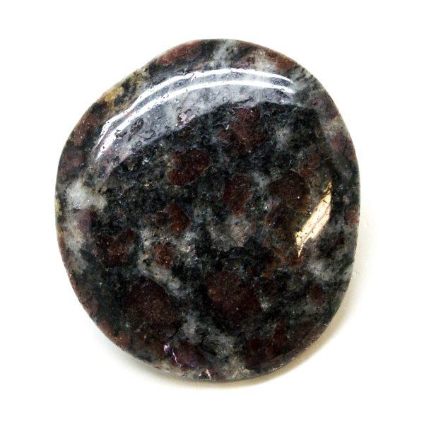 Garnet in Biotite Palm Stone (Medium)-149127