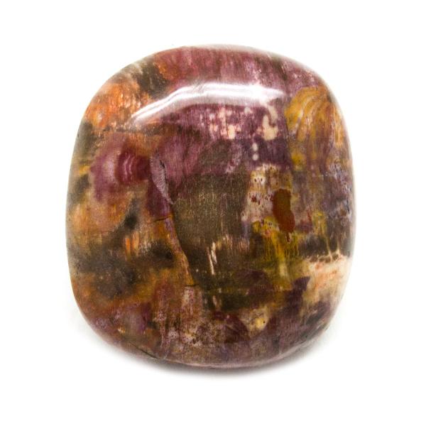 Petrified Wood Aura Stone (Small)-0