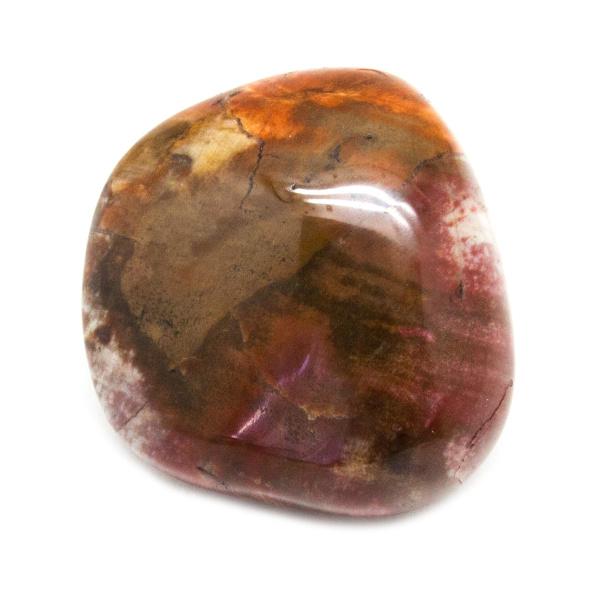 Petrified Wood Aura Stone (Small)-150677