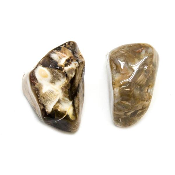 Peanut Wood Aura Stone Pair (Medium)-172537