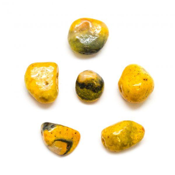 Bumble Bee Jasper Tumbled Stone Set (Medium)-172567