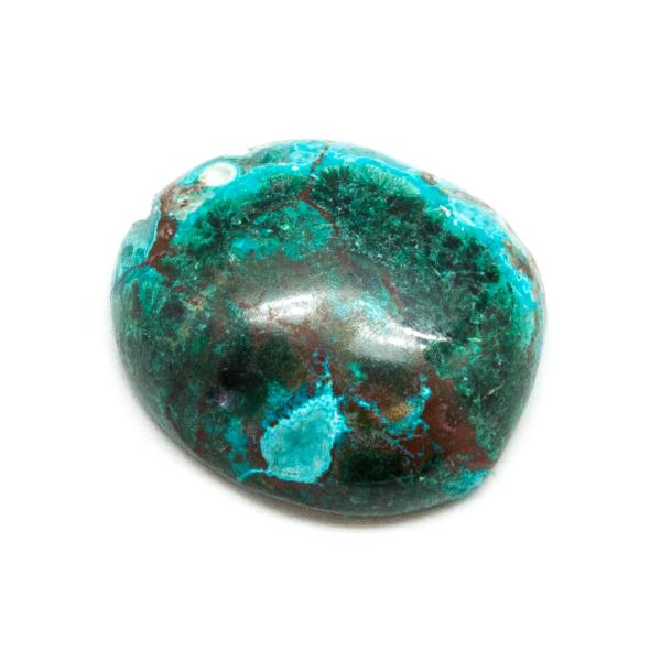 Polished Malachite and Chrysocolla Cabochon-178712