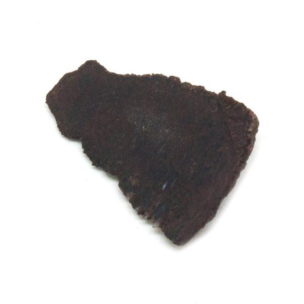 Rough Dino Bone Crystal Pair-180770