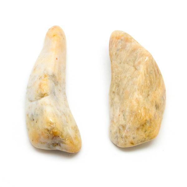 Agatized Coral Aura Stone Pair (Small)-0