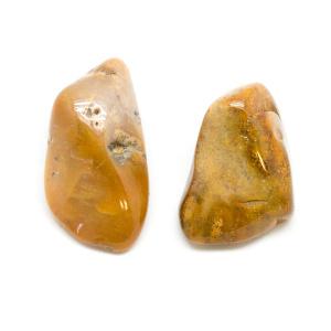Agatized Coral Aura Stone Pair (Small)-182602