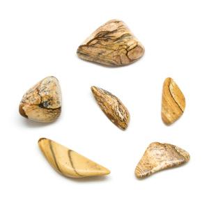 Picture Jasper Tumbled Stone Set (Extra Large)-0