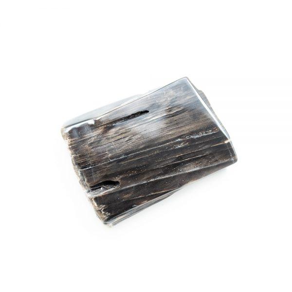 Polished Petrified Wood Slab-203781