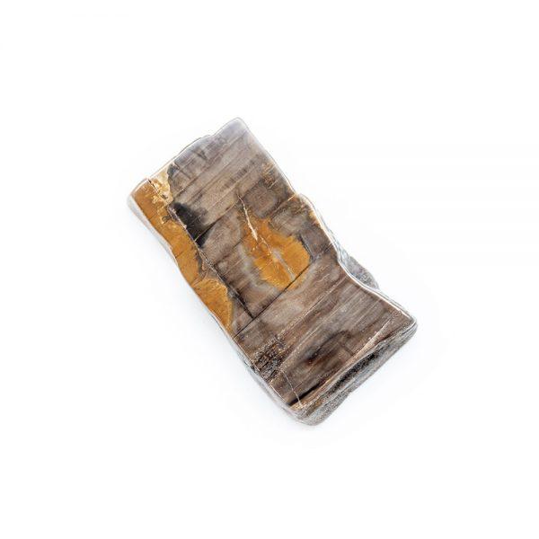 Polished Petrified Wood Slab-203782