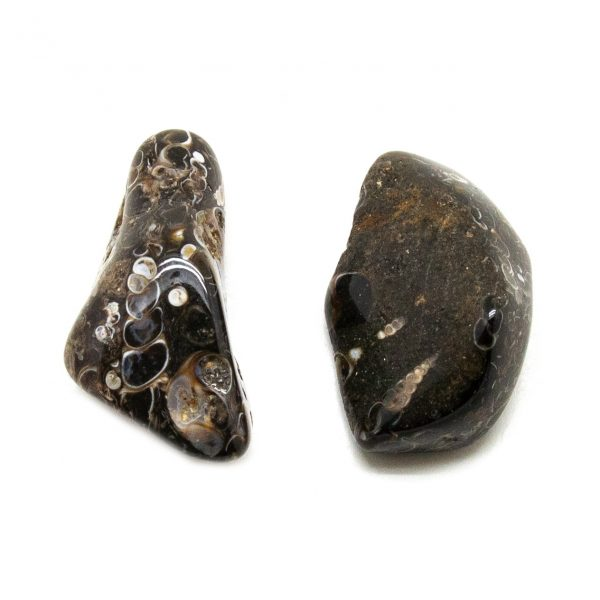 Turritella Agate Aura Stone Pair (small)-207770