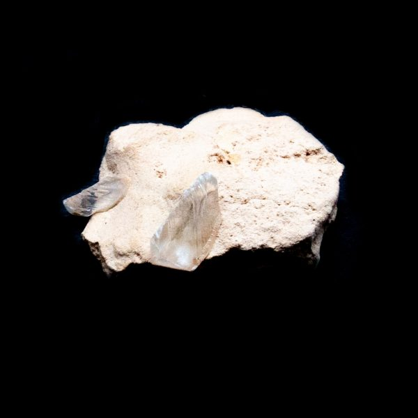 Selenite Crystal-219697