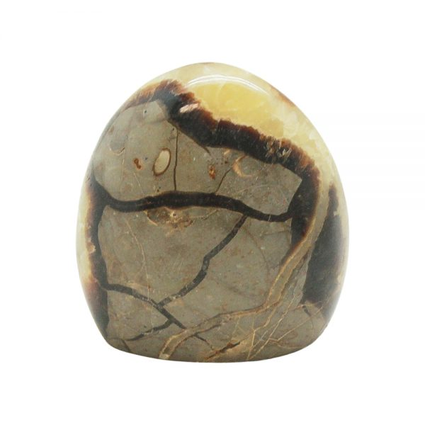 Septarian Free Form (Medium)-218033