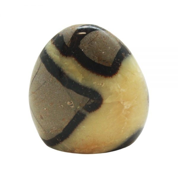 Septarian Free Form (Medium)-0