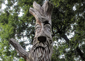 nature spirits - your spirit guides